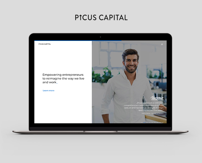 Website Design – Picus Capital / www.picuscap.com